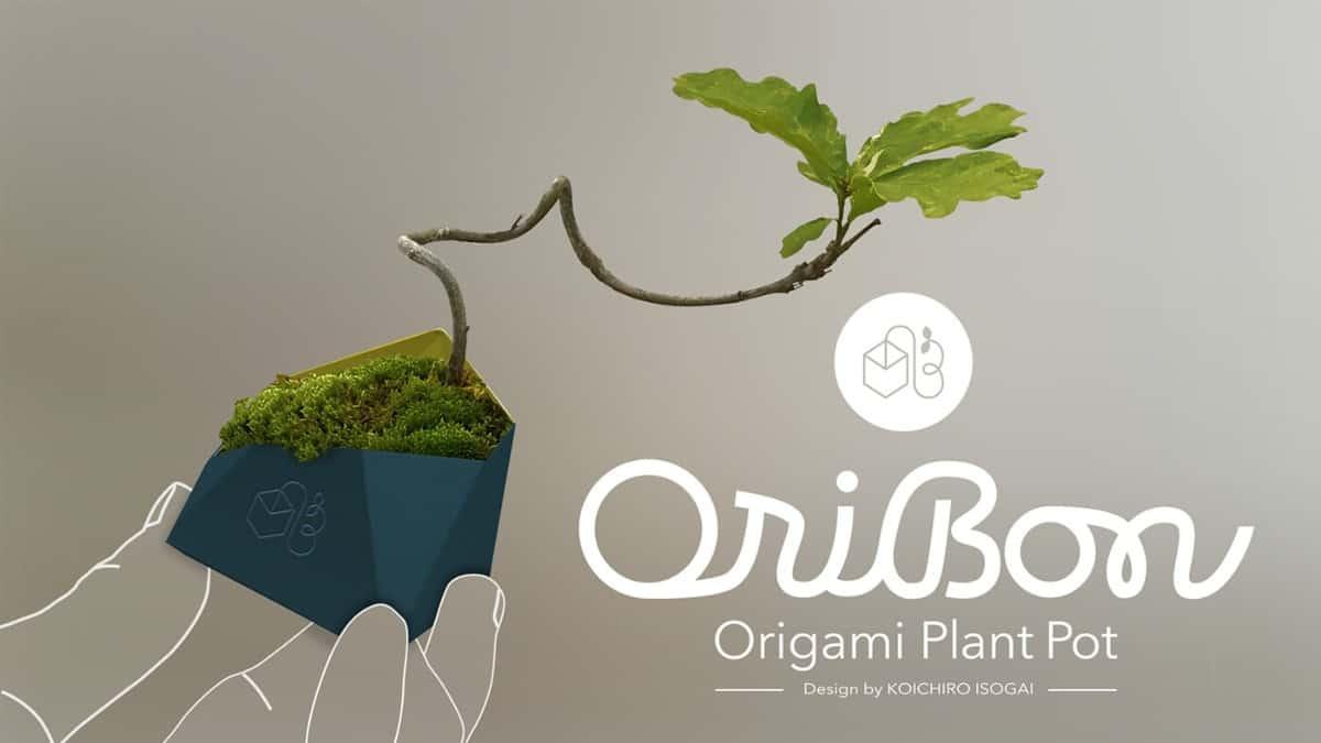 盆栽視覺設計